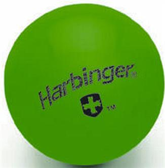 Harbinger 4 lb. Weighted Fitness Ball